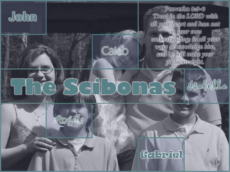 The Scibonas